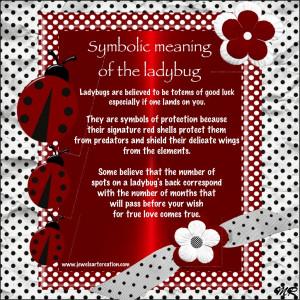 Symbolic meaning of the ladybug