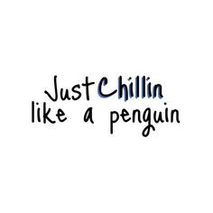 cute penguin adorable love liked on polyvore more chillin penguins ...