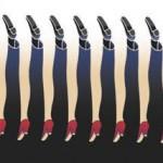 Al Seckel over gezichtsbedrog en zintuigelijke illusies