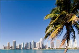 Posts related to Florida West Coast Beaches Near Orlando