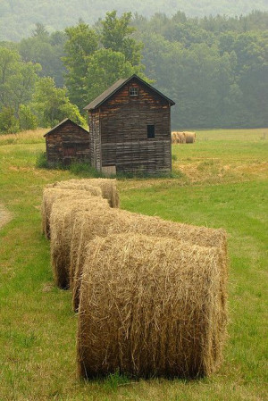 ... Farms, Country Living, Farms Life, Country Life, Haybale, Old Barns