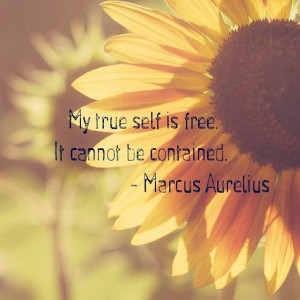 My true self is free. It cannot be contained. Marcus Aurelius Quote