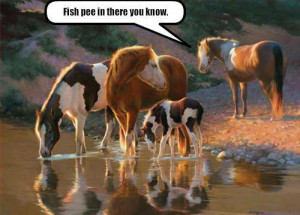 Funny Animals with Quotes .....ENJOY!!