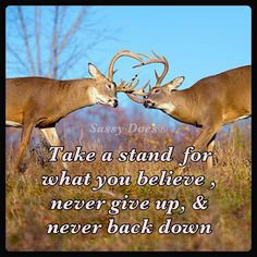 Take a stand for what you believe, never give up & never back down ...