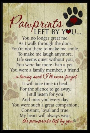 Gracie, an amazing dog! » pawprints quote