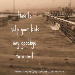 How to help your kids say goodbye to a pet