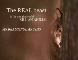 Stop killing our wolves quote!