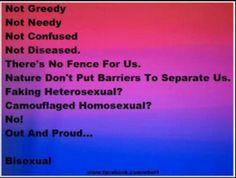 bisexual more lgbt pride lbgt pride bisexual pride i m bisexual fence ...