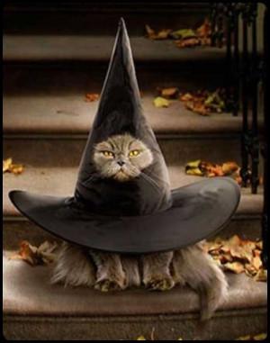 19. Cat in the Hat Halloween Costume