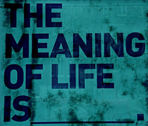 The Meaning of Life Is ~ Boldness Quote