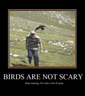 Scary Animals with Funny Quotes