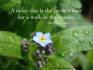 rainy day love quotes