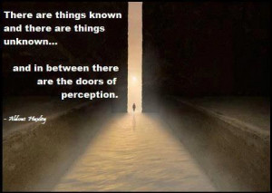 Doors of perception...
