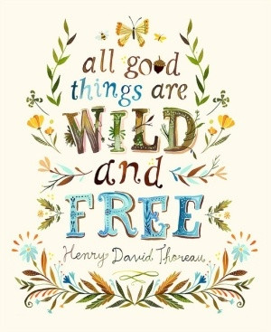 Henry David Thoreau by Katie Daisy by lakeisha