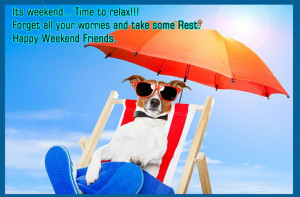 Happy Weekend Folks!! have fun!: Cute Little Dogs, Summer Pictures ...