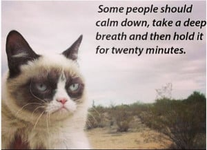 Grumpy Cat being funny lol.