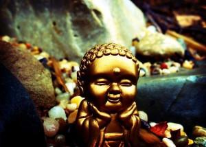 buddha baby