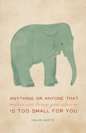 cute elephant quotes
