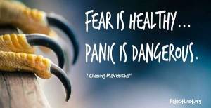 Quotes about overcoming fear and panic (from Chasing Mavericks ...