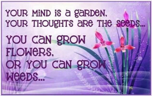 Your Mind Is A Garden, Your Thoughts Are The Seeds
