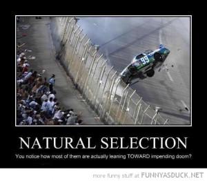 natural selection people leaning towards nascar race car crash funny ...