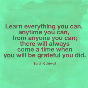 Language learning quote: Learn everything you can, anytime you can ...