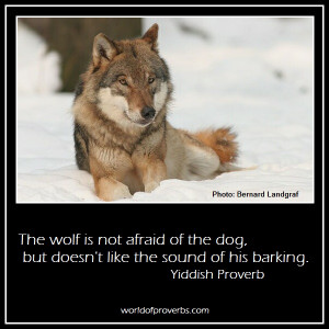 Home Quotes Wolf Pack Sayings Quotes