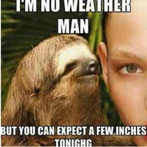 Dirty Sloth Meme Dragon