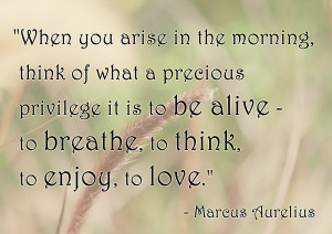 precious privilege life quotes share this life quotes on facebook