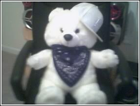 gangsta bear Image