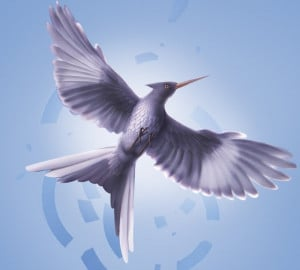 Mockingjay from 3rd book cover