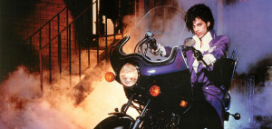 purple rain bike
