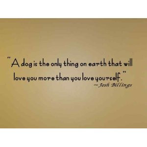 want to share some of my favorite quotes with you and see whether or ...