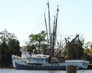 The Shrimp Boats that usually occupy this harbor had been