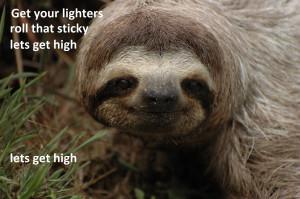Dirty Sloth Meme Of sloths : sloths