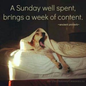 Yes! #quote #lazyday #sundayfunday