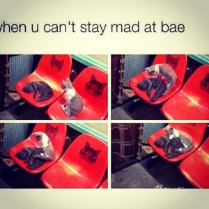 When you cant stay mad at bae