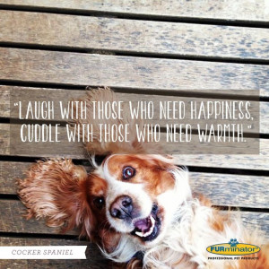 Cocker Spaniel motto: Laugh with those who need happiness, cuddle with ...