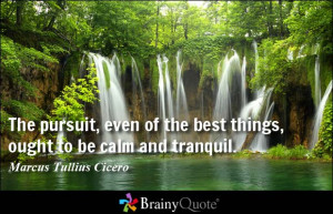 The pursuit, even of the best things, ought to be calm and tranquil.