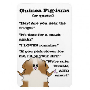 Pig Sayings Mags
