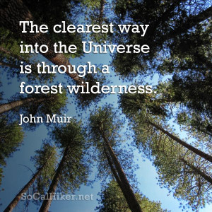 great quote from John Muir, and my creation for Day 3 of my 30 Days ...
