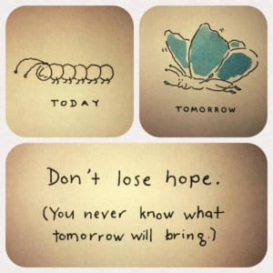 butterfly, hope, quotes, text, today, tomorrow, true, word