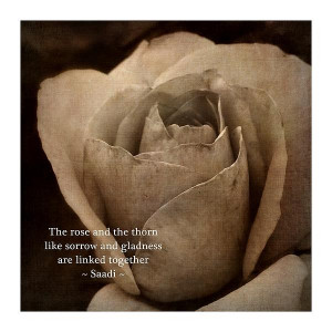 The Rose And The Thorn Print by Patricia Strand