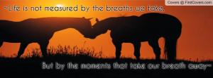 Facebook Covers Wild Horses