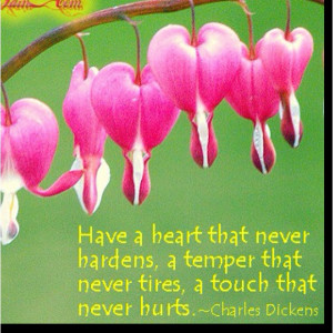 Bleeding Hearts, one of my all time favorites & a beautiful quote by ...