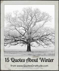15 Quotes About Winter - from QuotesGratitude.com #winter #quote