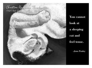 Cat quote card: Sleeping tuxedo cat / Jane Pauley wisdom