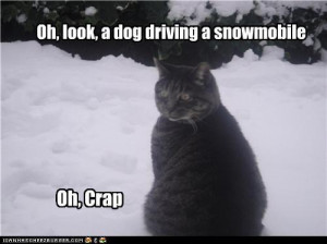 Funny Snowmobile Sayings