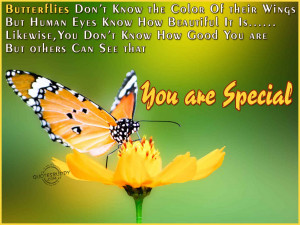 Butterflies Don't Know The Color Of Their Wings