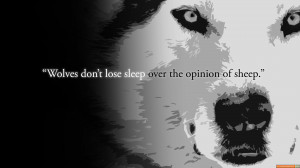Training Day Quotes Wolf Or Sheep